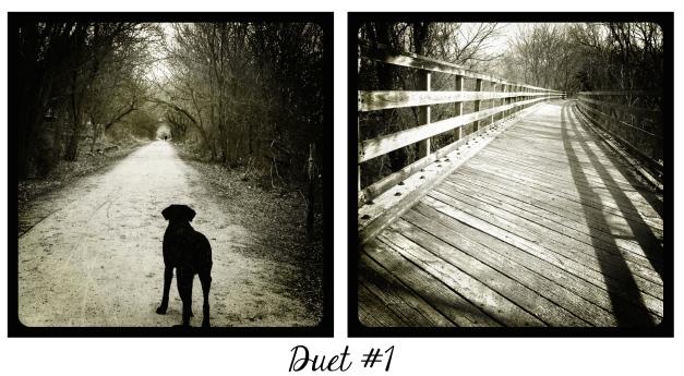 Duet #1