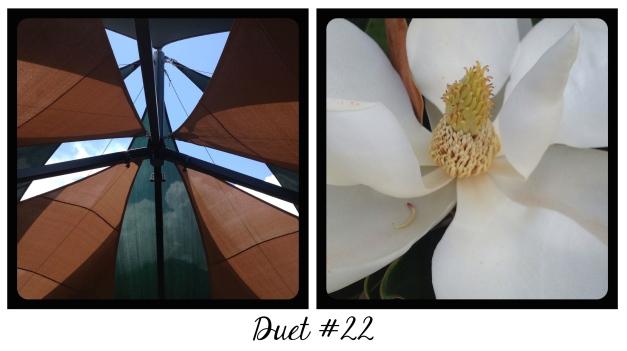 Duet #22