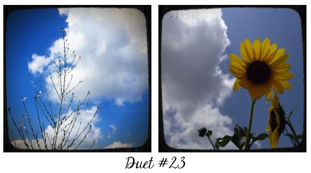 Duet #23