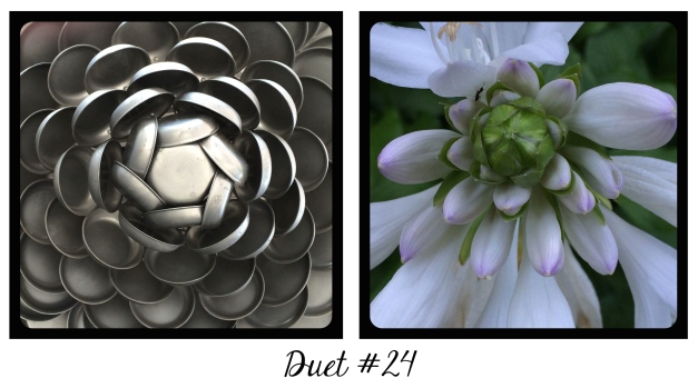 Duet #24