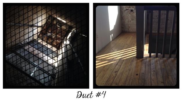 Duet #4